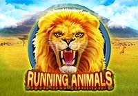 Running Animals